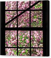 Through An Old Window Canvas Print by Olivier Le Queinec