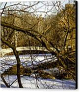 Through The Branches 2 - Central Park - Nyc Canvas Print