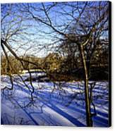 Through The Branches 4 - Central Park - Nyc Canvas Print