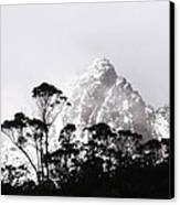 Through The Trees Come Mountains Canvas Print by Lee Stickels