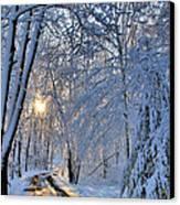 Through The Woods Canvas Print by Kristin Elmquist
