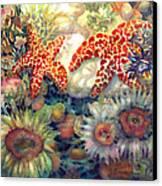 Tidal Pool II Canvas Print by Ann  Nicholson