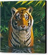 Tiger Pool Canvas Print by MGL Studio - Chris Hiett