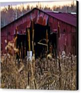 Tin Roof Rusted Canvas Print by Bill Cannon