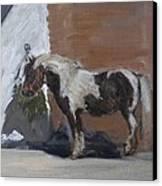 Tiverton Canvas Print by Caroline Hervey-Bathurst