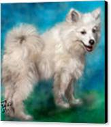 Too Sexy For My Fur Canvas Print by Colleen Taylor