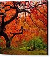 Tree Fire Canvas Print