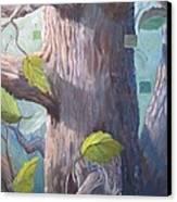 Tree Hugger Canvas Print by Paula Marsh