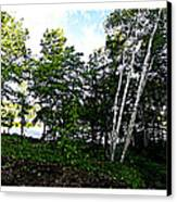 Tree Lined Lake Canvas Print by Dianne  Lacourciere