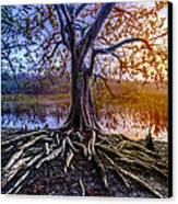Tree Of Souls Canvas Print by Debra and Dave Vanderlaan