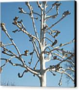 Tree Sculpture Canvas Print by Paula Rountree Bischoff