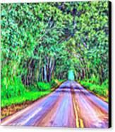 Tree Tunnel Kauai Canvas Print