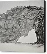 Tree With Faces Canvas Print by Glenn Calloway
