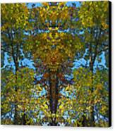 Trees Alive Canvas Print by Susan Leggett