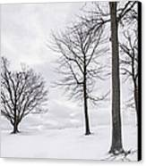 Trees And Snow Canvas Print by Wendell Thompson