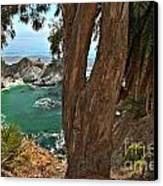 Trees Over Mcway Falls Canvas Print by Adam Jewell