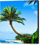 Treescape North Shore Canvas Print by Lisa Cortez