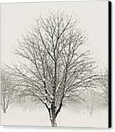 Treeternity Canvas Print