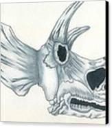 Tricerotops Skull Canvas Print