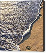 Tropical Beach With Footprints Canvas Print