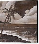 Tropics In Brown Canvas Print