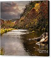 Trout Fishing Canvas Print by Tamyra Ayles
