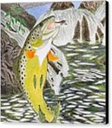Trout Stream In May Canvas Print by Gerald Strine