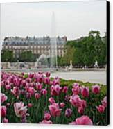 Tuileries Garden In Bloom Canvas Print by Jennifer Ancker