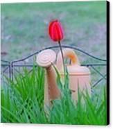 Tulip Hdr Canvas Print by Thomas  MacPherson Jr