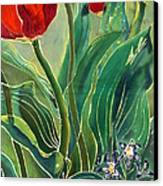 Tulips And Pushkinia Detail Canvas Print by Anna Lisa Yoder