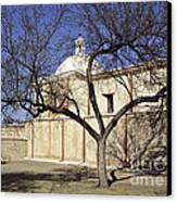 Tumacacori With Tree Canvas Print
