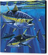 Tuna Blitz Off0039 Canvas Print by Carey Chen