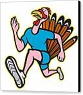 Turkey Run Runner Side Cartoon Isolated Canvas Print by Aloysius Patrimonio