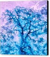 Turquoise Oak Tree Canvas Print by Priya Ghose
