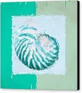 Turquoise Seashells Xii Canvas Print by Lourry Legarde