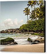 Turtle Beach Canvas Print by Jason Bartimus