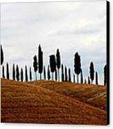 Tuscany Hill Canvas Print by Arie Arik Chen