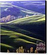 Tuscany Hills Canvas Print by Arie Arik Chen