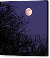 Twilight Moon Canvas Print by Rona Black