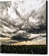 Twisted Sky Canvas Print by Matt Molloy