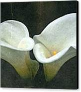 Two Canvas Print by Cathie Tyler
