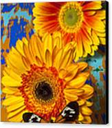 Two Golden Mums With Butterfly Canvas Print by Garry Gay