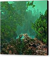 Underwater 8 Canvas Print by Bernard MICHEL