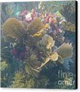 Underwater Colors Canvas Print by Adam Jewell