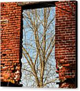Urban Decay Canvas Print by Olivier Le Queinec