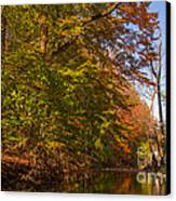 Valley Creek Canvas Print by Rima Biswas
