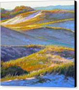 Valley Of The Dunes Canvas Print by Ed Chesnovitch