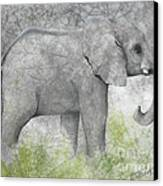 Vanishing Thunder Series-baby Elephant II  Canvas Print
