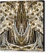 Vast Knowledge II Canvas Print by Betsy C Knapp