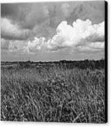Vast Landscape Canvas Print by Andres LaBrada